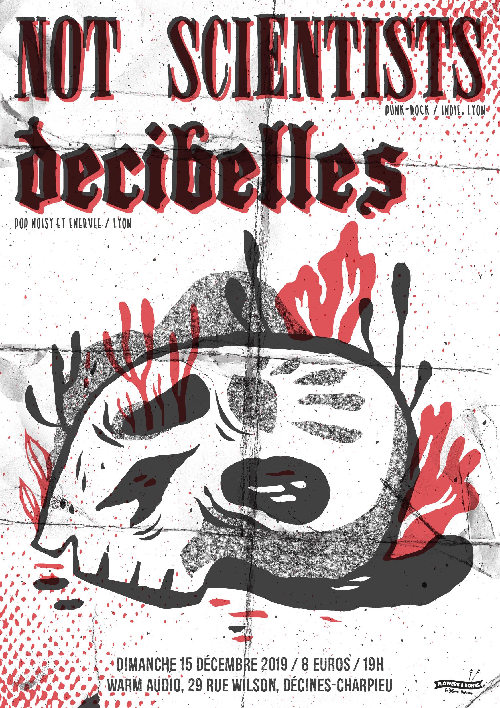 Not Scientists + Decibelles